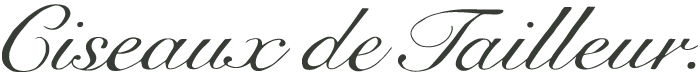 Ciseaux de Tailleur
